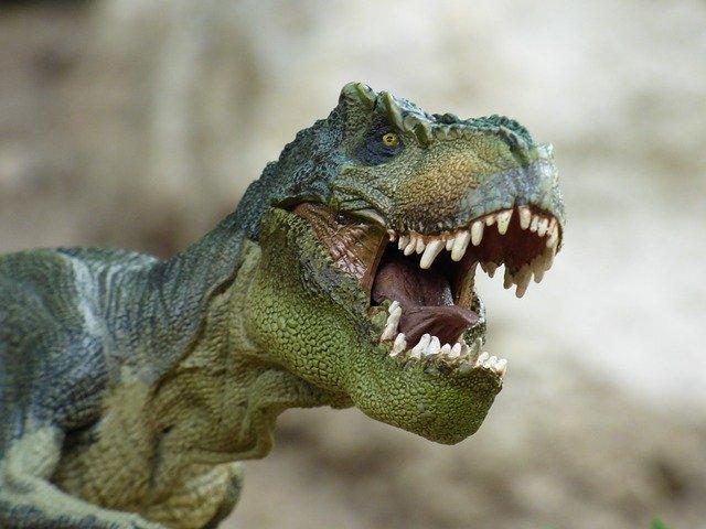 zdjęcie do artykułu parki dinozaurów w Polsce