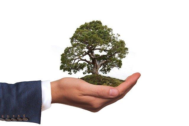 zdjęcie do artykułu budownictwo zrównoważone