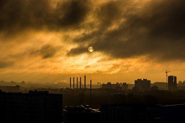 zdjęcie do artykułu budynki zwalczające smog